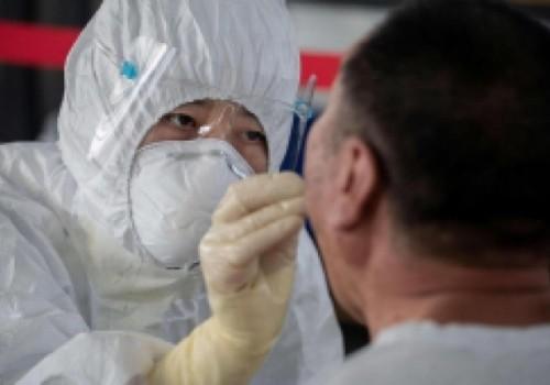 Nueva cepa de gripe porcina podría transmitirse a humanos