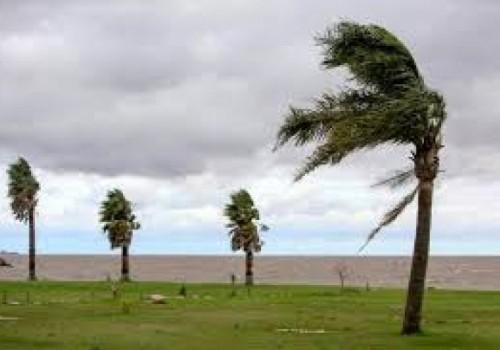 Alerta amarilla por vientos fuertes en el sur del país