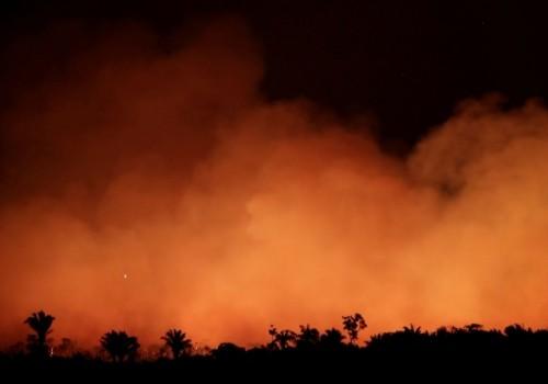 El pulmón del planeta en llamas desde hace 16 días