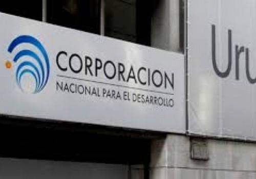 134 empleados de la CND irán al seguro de paro