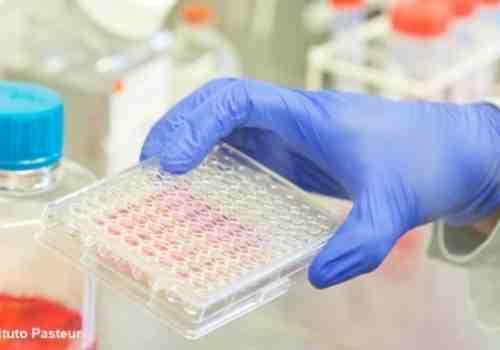 Coronavirus: 4 fallecimientos y 825 nuevos casos
